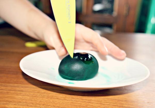 science experiment reptile egg. Black Bedroom Furniture Sets. Home Design Ideas