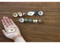 Easy math game, seashells, diy math games